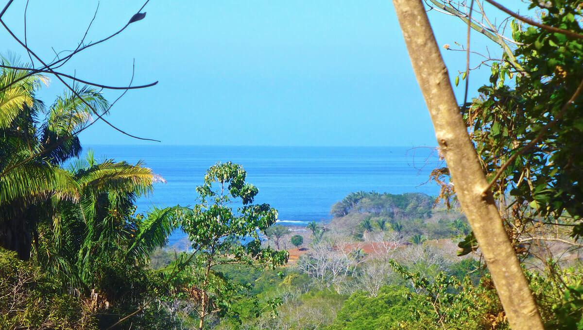 Ocean & Nature Reserve View [C-4]