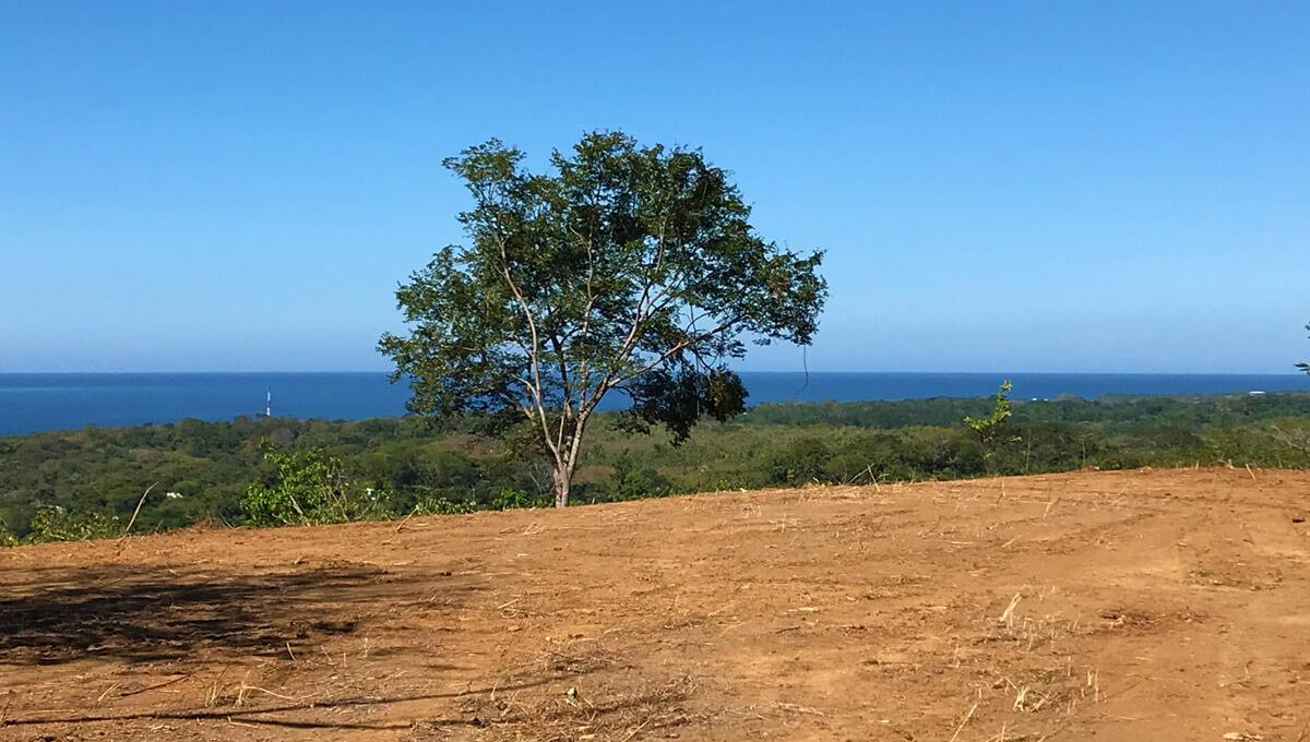 Panorama Ocean View [N-4]