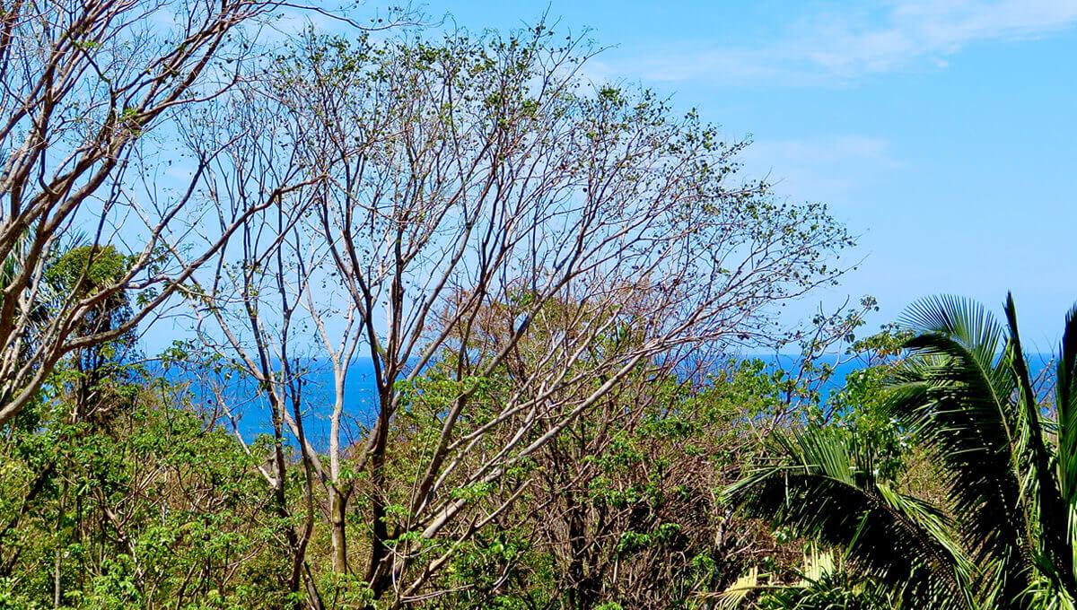 Beautiful Nature & Ocean View [E-6]